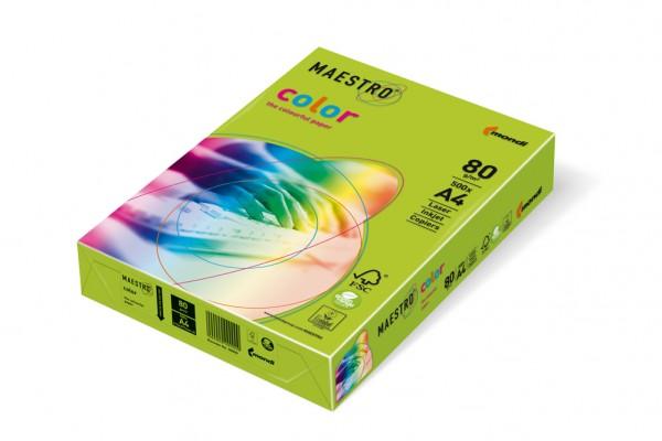 Kopierpapier Maestro-Color intensiv, DIN A4, 80g/qm, lindengrün, 2.500 Blatt